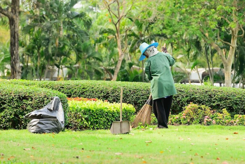 How to Hire Garden Maintenance Services