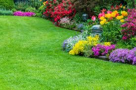 Benefits of Using Garden Management Services