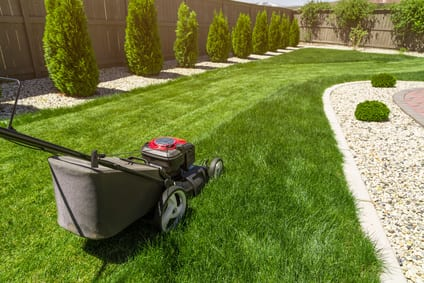 Why Garden Maintenance Is So Important In The North Shore