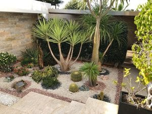 Design a Desert Landscape in Sydney