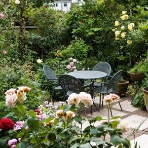 Gardening Trends in Sydney for Maintenance & Landscaping