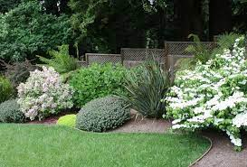 Gardening Services for the North Shore
