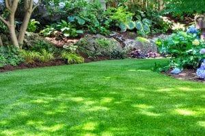Landscape Maintenance Plan in Sydney