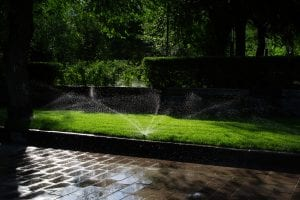 Residential Garden Maintenance Services and Tips